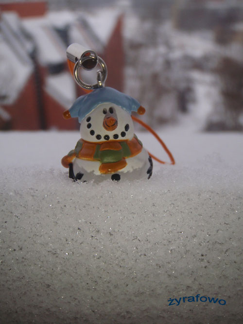 zima 2010_40