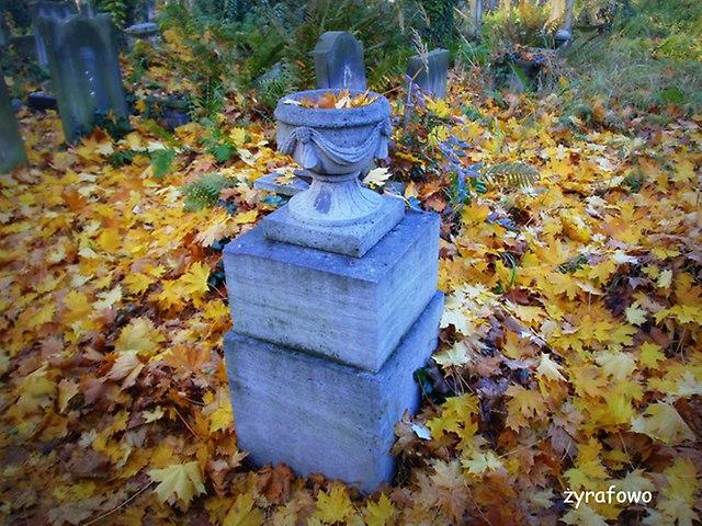 Cmentarz Zydowski_08