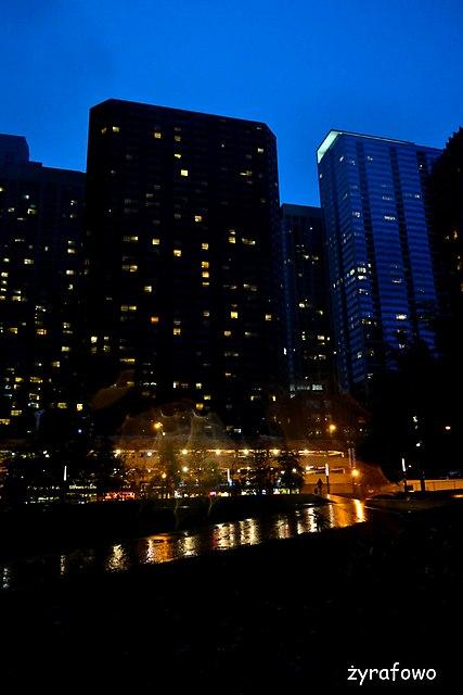 Chicago 2014_54