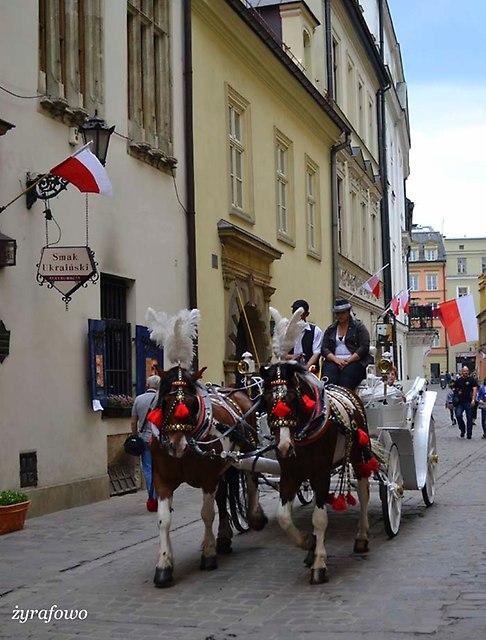 Krakow 2014_33