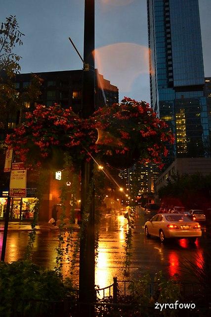 Chicago 2014_50