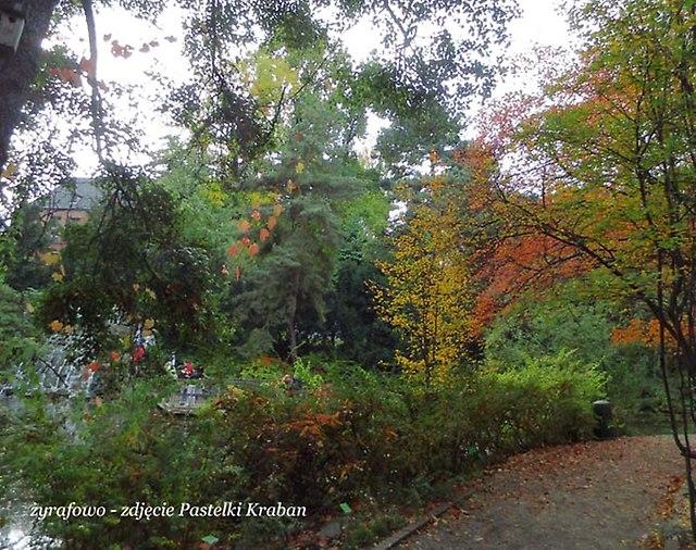 jesien 2012_166