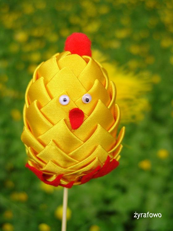 kurczak 2011_31