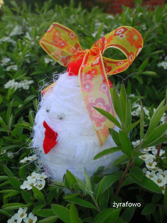 kurczak 2011_28