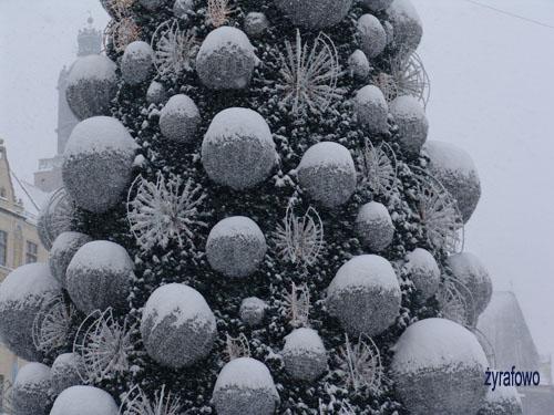 zima 2010_58