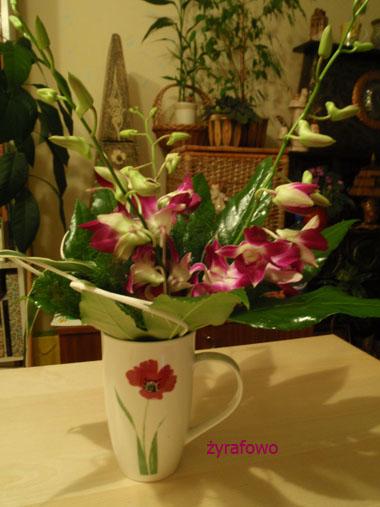 kwiatki 03