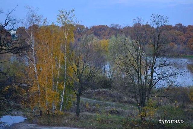 jesien 2012_221
