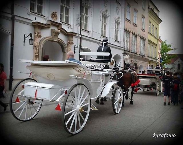 Krakow 2014_35