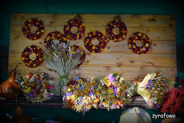 Ogrod Botaniczny 2014_33