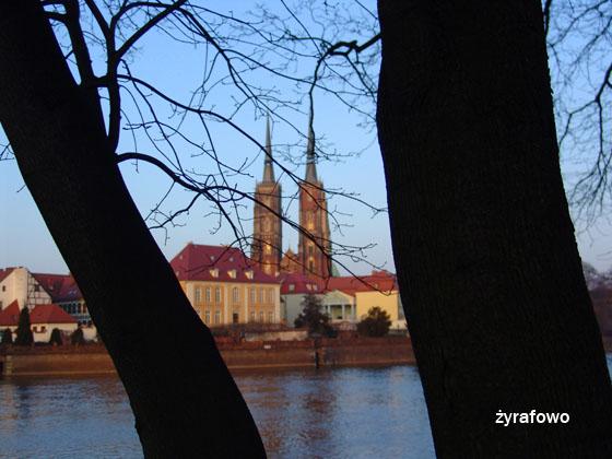 wiosna 2011_03