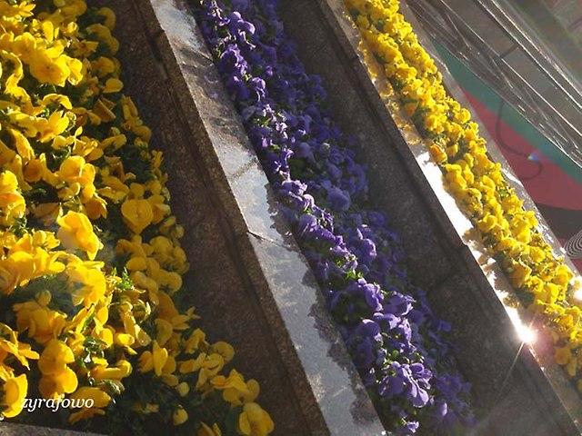 wiosna 2014_86