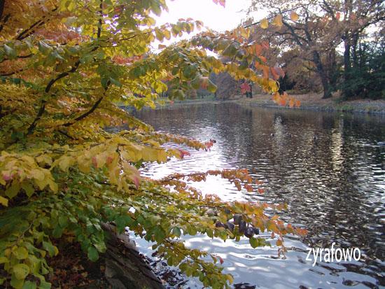 jesien 2010_32