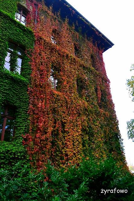 Ogrod Botaniczny 2014_17