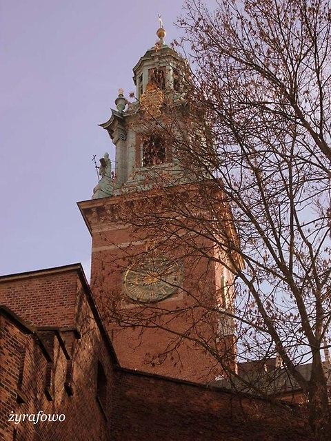 Krakow 2013_14
