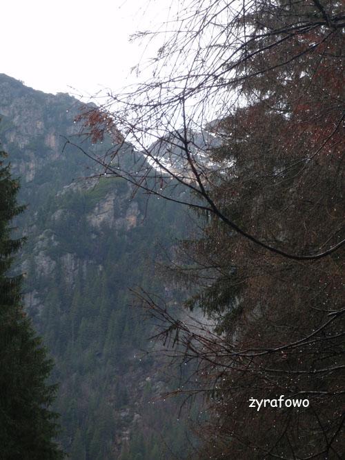 Tatry 2010_11