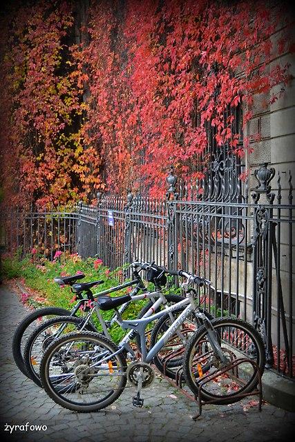 jesiennie_01