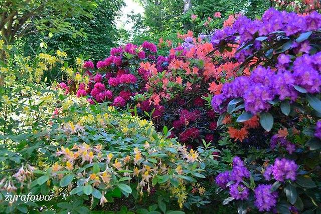 Ogrod Botaniczny_04
