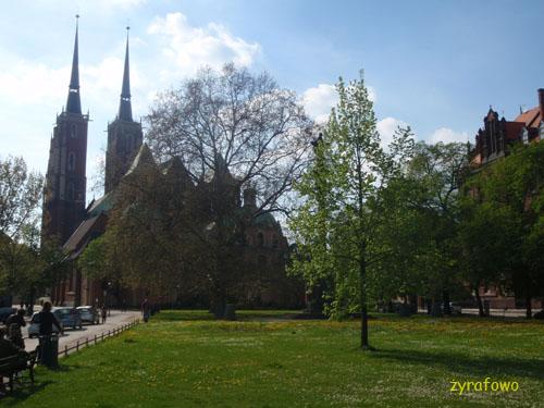 wiosna 2010_14
