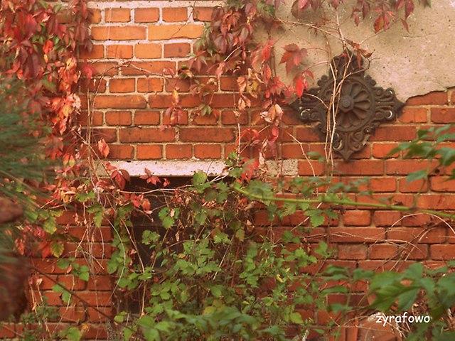 jesien 2014_50