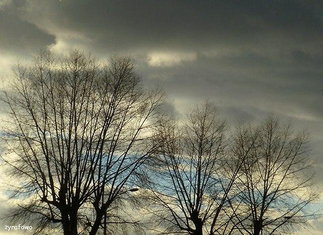 jesien 2015_16