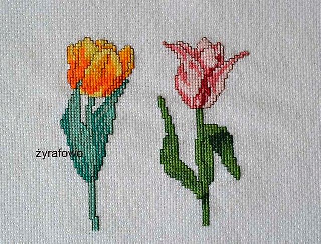 tulipany_03