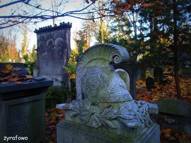 Cmentarz Zydowski_12