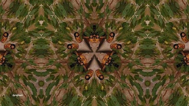 mozaika 2014_01