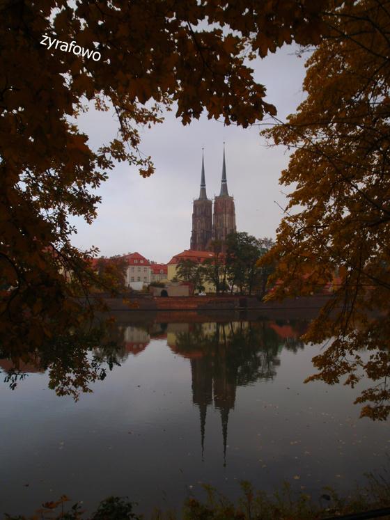 jesien 2011_39