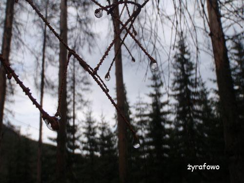 Tatry 2010_12