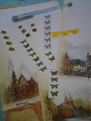 wymianka motylkowa_02