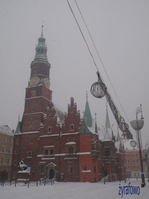 zima 2010_24
