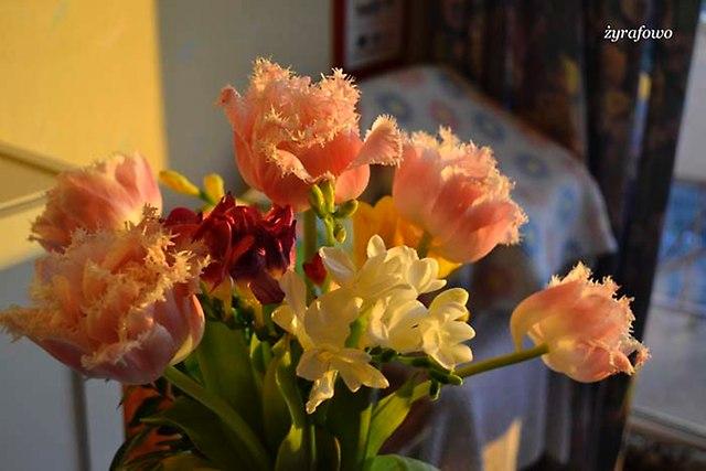 kwiaty 2014_10