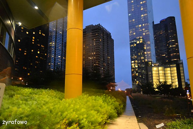 Chicago 2014_53