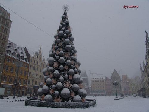 zima 2010_63