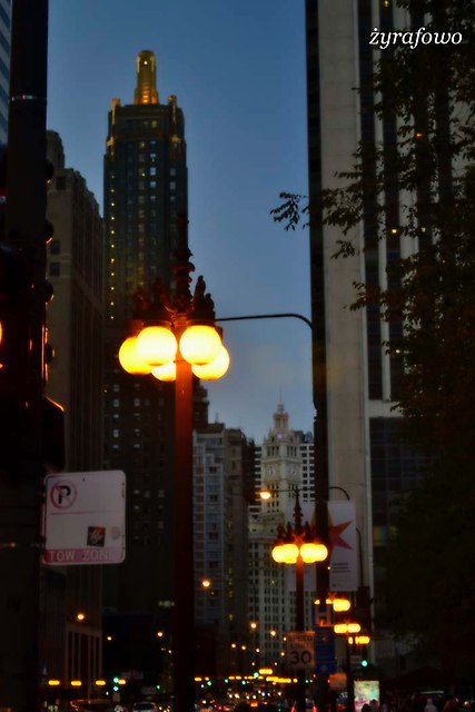 Chicago 2014_37