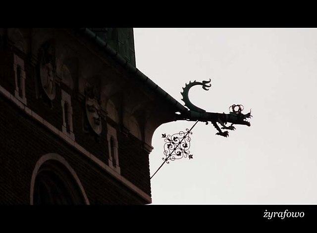 Krakow 2013_11
