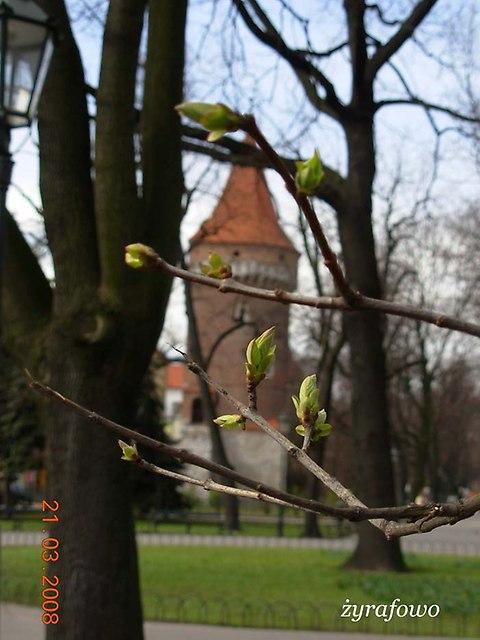 Krakow 2008_17