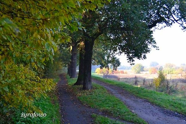 jesien 2012_43