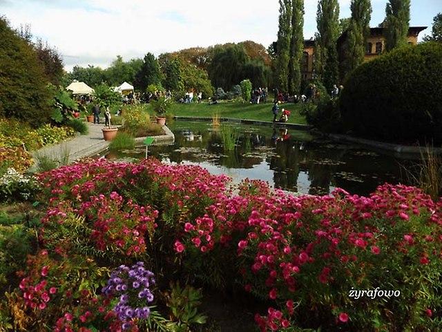 Ogrod Botaniczny 2012_07