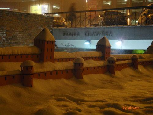 zima 2010_11