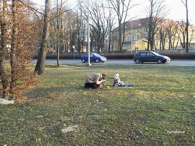 Wroclaw 2014_09
