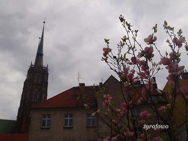 kwiecien 2012_02