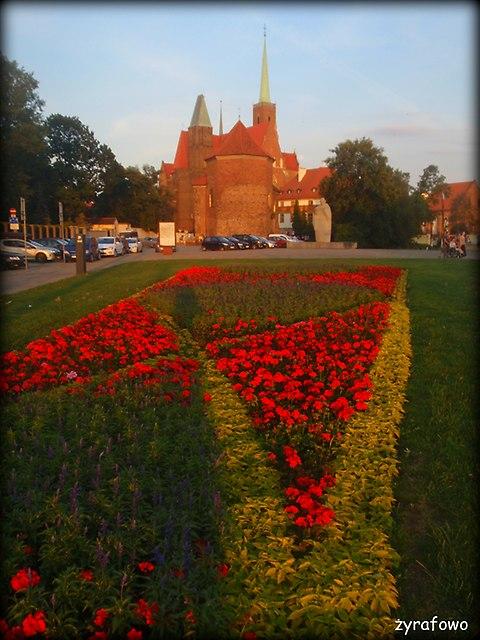 Wroclaw 2015_20