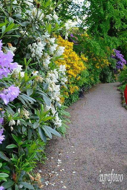 Ogrod Botaniczny_15