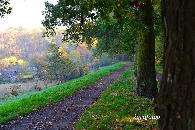 jesien 2012_32
