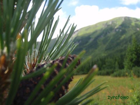 Tatry 2009 03