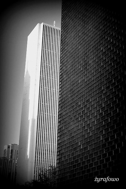 Chicago 2014_25