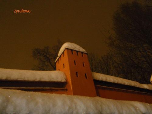 zima 2010_10