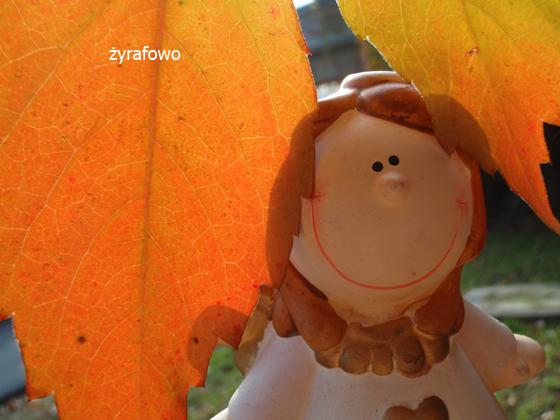 jesien 2011_14