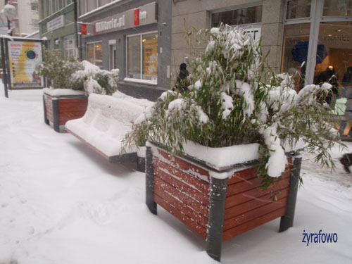 zima 2010_23